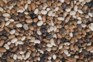 Dried beans to save money