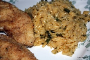 Quick Chicken Dinner – Parmesan Crusted Chicken Entree