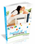 Pursuit of Proverbs 31. AmyBayliss.com