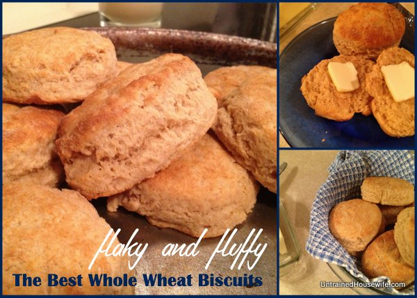 The Best Whole Wheat Biscuits are Made with Yogurt!