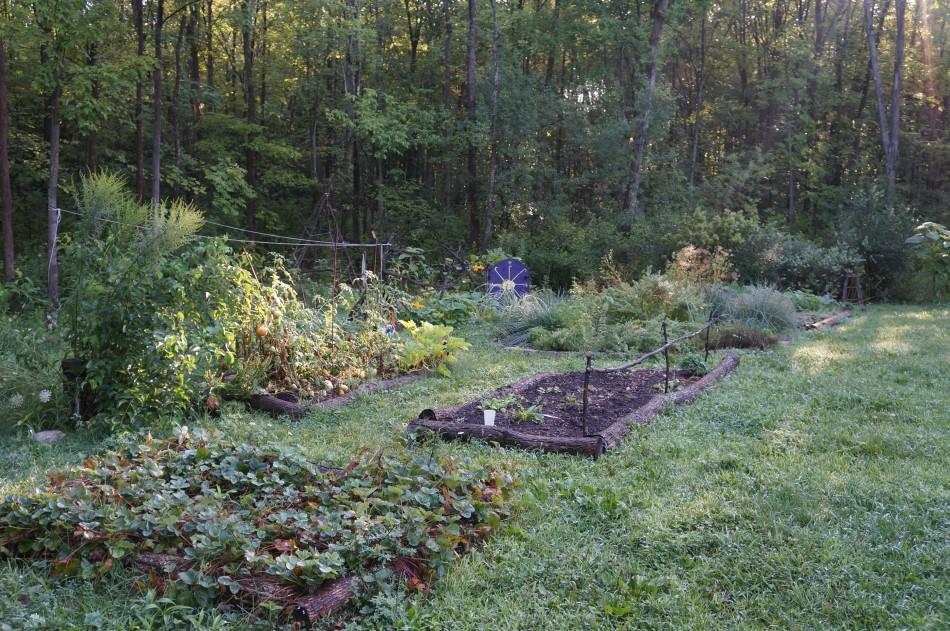 Winter Garden Planning