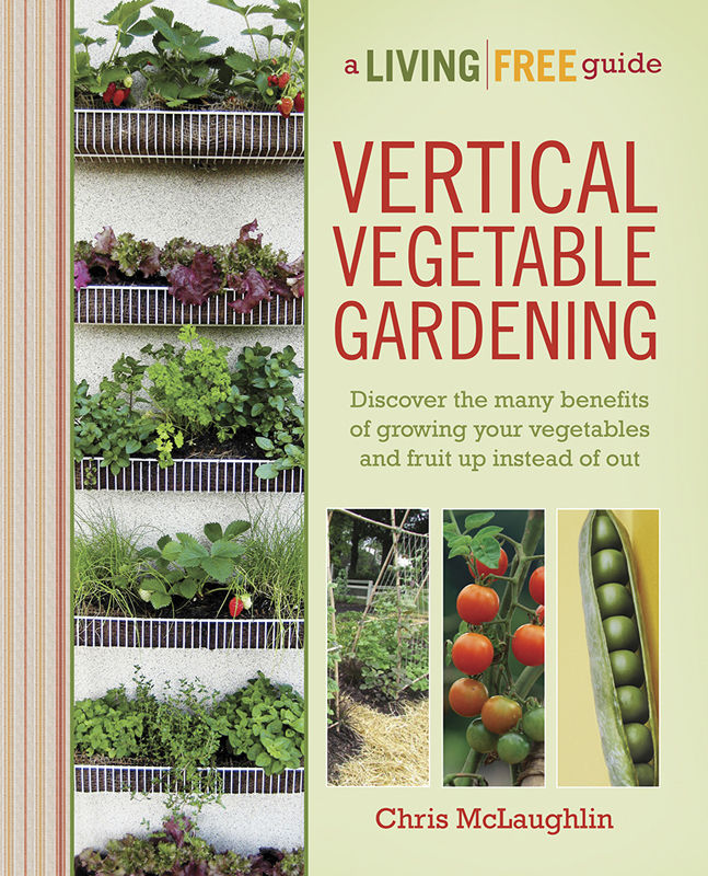 garden design with growing up a review of vertical vegetable gardening with garden design ideas - Vertical Vegetable Garden Design