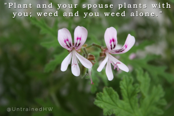 Plant Together Weed Alone Garden Quote at Untrained Housewife