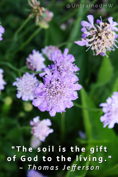 Soil is a Gift Gardening Quotes at Untrained Housewife