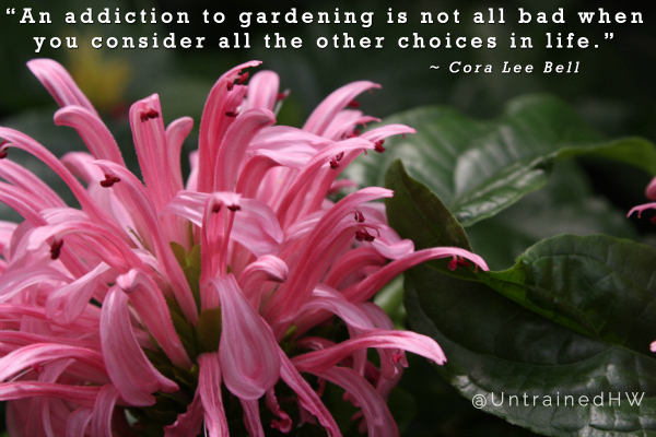 Gardening is an Addiction quote at Untrained Housewife