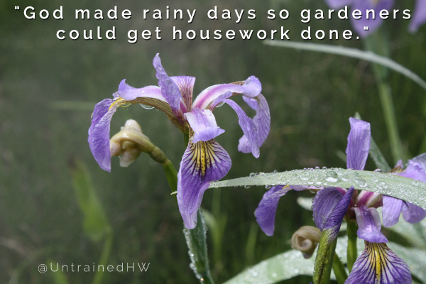 Rainy Day for Housework Gardening Quote at Untrained Housewife