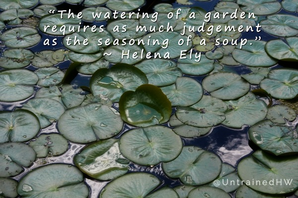 The Watering of a Garden Quote at Untrained Housewife