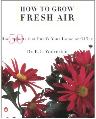 """How To Grow Fresh Air"" book cover"