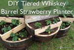 Tiered Whiskey Barrel Strawberry Planter