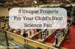 Science Fair by Richard Bowen