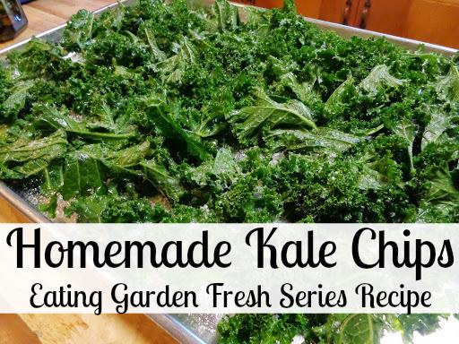 Kale Chips Eating Garden Fresh