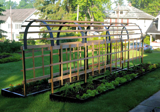 how to build a trellis plan for vertical tomatoes - Vertical Vegetable Garden Design