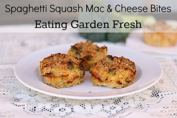 mac and cheese spaghetti squash bites