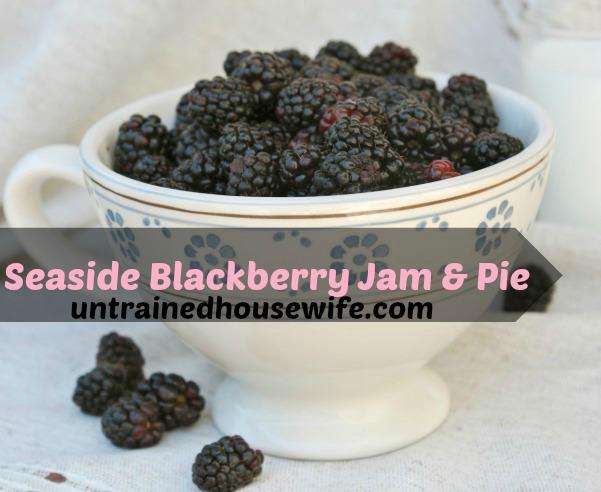 ripe blackberries in a porceline cup