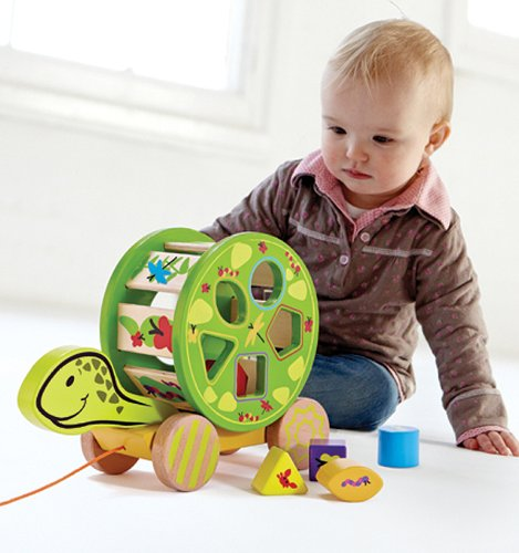 Awesome shape sorter pull along toy, two in one!