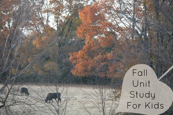 Fall Unit Study for Kids - Homeschooling