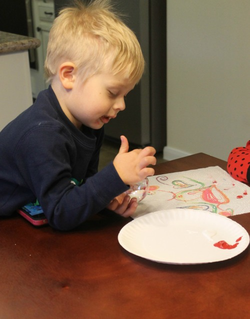 Painting DIY Christmas Ornament
