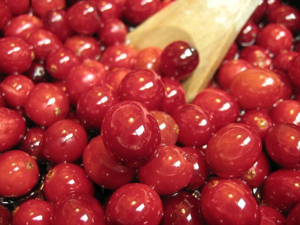 cranberries for raw probiotic creamy cranberry salad dressing