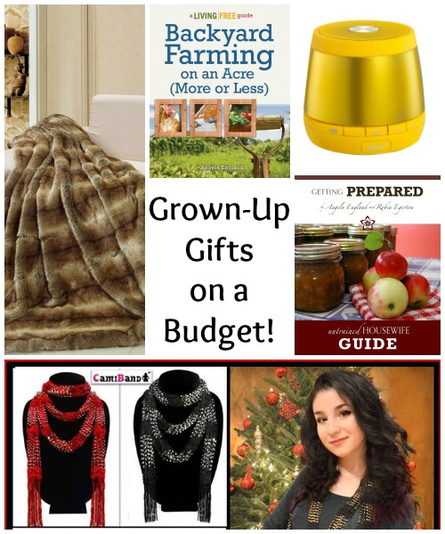Grown Up Gifts on a Budget - Tips and Trends