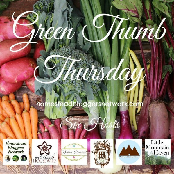 green thumb thurs