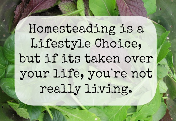 Don't let homesteading take over your life