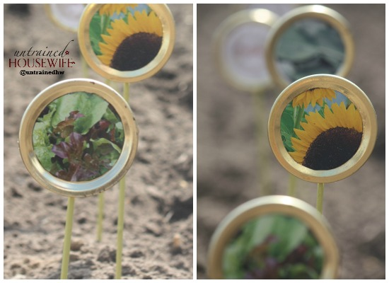 Repurposed Canning Lid Seed Label Markers