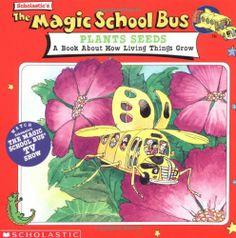 book magic schoolbus
